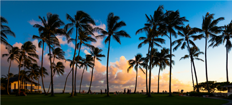 Hawaii header image