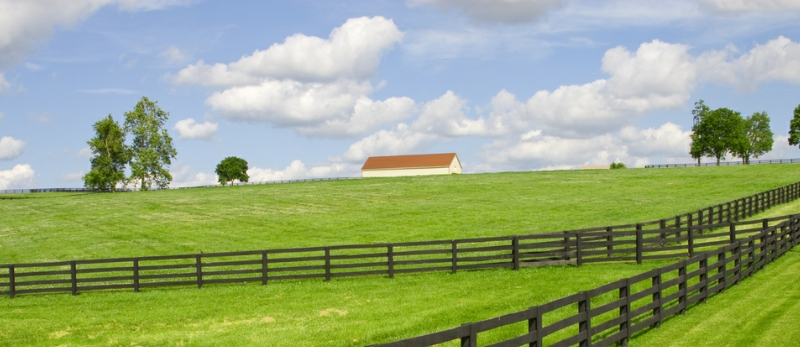 Kentucky header image