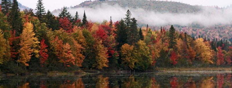 New Hampshire header image