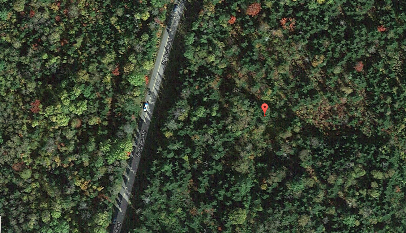 Eagle Lake, ME Land for Sale   108 Acres Lot For Sale In New