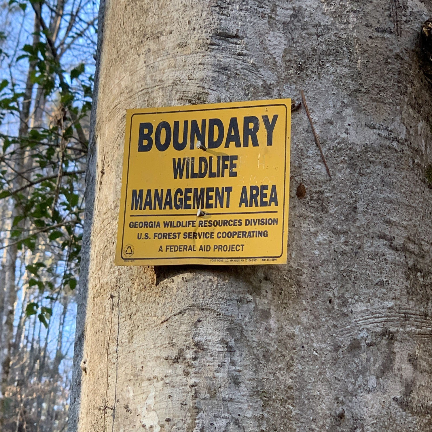 National Forest Boundary butts up against property