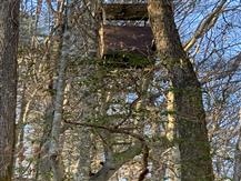 "The ""Condo"" deer stand on Property"