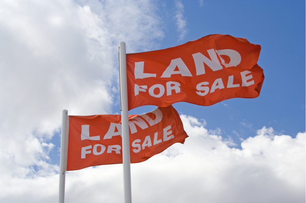 Land for Sale signs